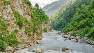 Photo of You should probably choose 5 treks to the villages in Himachal Pradesh.