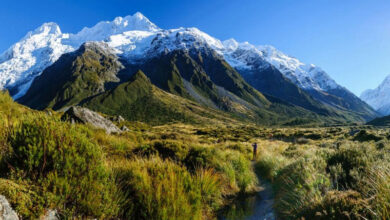 Photo of 8 Tourist Attractions New Zealand Ranking High