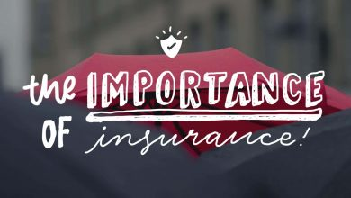 Photo of The Importance of Insurance