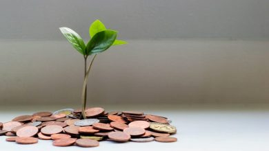 Photo of How to Grow an Accounting Firm: Top 5 Accounting Firm Growth Strategy