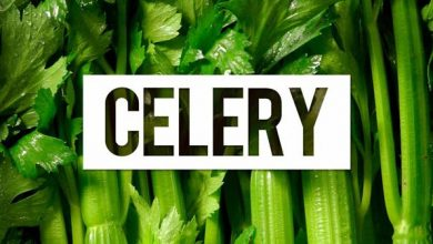 Photo of The benefits of celery for your body