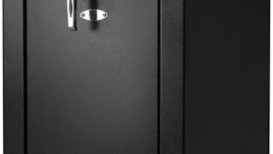 Photo of Biometric Gun Safe: What it does and Why You Should Invest in It?