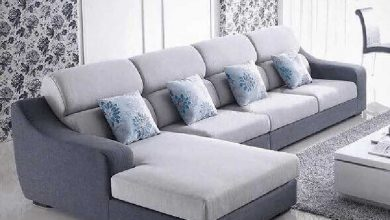 Photo of Fantastic Options for Your Home: What You can Put In front of Your Sofa?