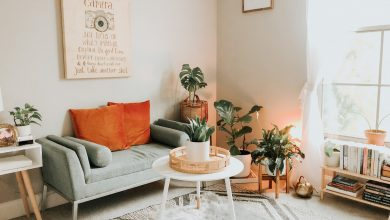 Photo of 8 Cosy Home Decor Tips for People Who Live Alone