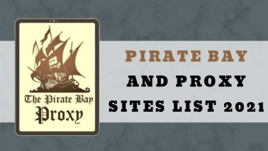 Photo of What is pirate bay & its Proxy Sites List that Work.