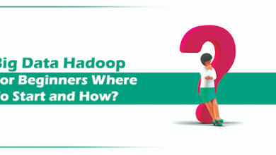 Photo of Big Data Hadoop for Beginners Where to Start and How?