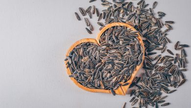 Photo of Different Ways We Use Sunflower Seeds In Our Daily Lifestyle!